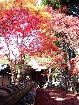 写真:大日堂(清水寺)