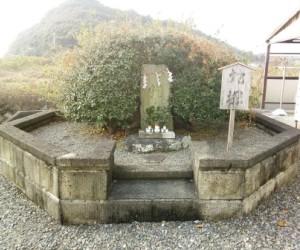 写真:清姫の蛇塚(1枚目)