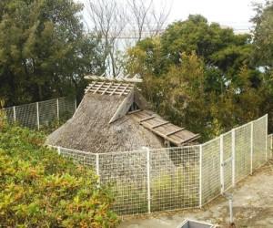 写真:復元堅穴住居