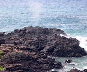 写真:潮吹岩