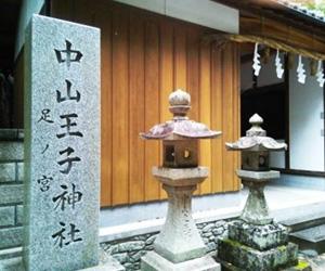 写真:中山王子「足の宮さん」 (1枚目)