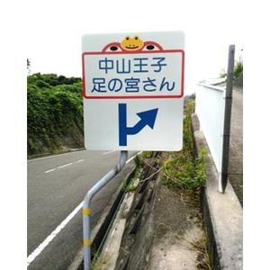 写真:中山王子「足の宮さん」 (2枚目)