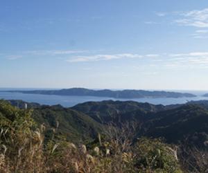 写真:重畳山(空海の森・ふるさとの森)