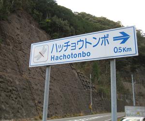 写真:トンボの道路標識!?