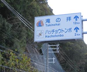 写真:トンボの道路標識!? (2枚目)