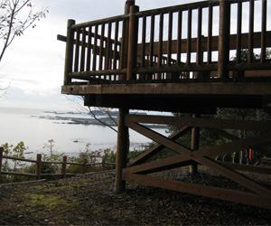 写真:太平洋が眺める世界遺産・熊野古道の高野坂 (3枚目)