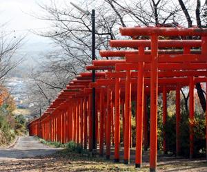 写真:丸高稲荷神社