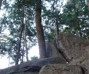 写真:不動山の巨石で聞こえる紀の川 (1枚目)
