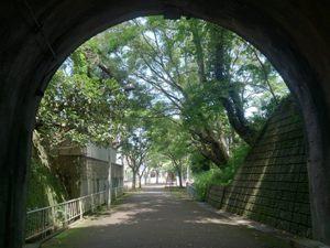 写真:明治時代の鉄道トンネル「鵬雲洞」(3枚目)
