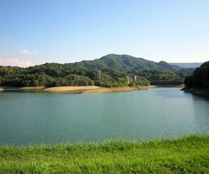写真:県下最大級のため池「亀池」