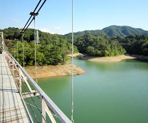 写真:県下最大級のため池「亀池」 (2枚目)