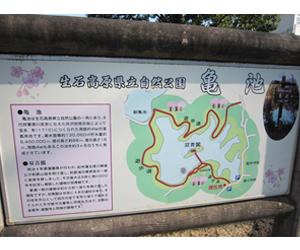 写真:県下最大級のため池「亀池」 (3枚目)