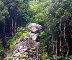 写真:奇岩「天狗岩」 (2枚目)