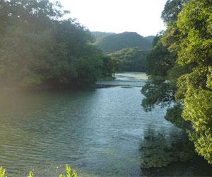 写真:住持池(じゅうじがいけ)
