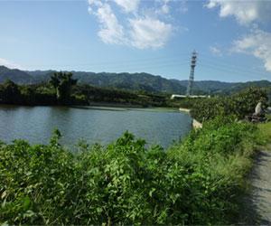 写真:華岡青洲ゆかりの池(垣内池)