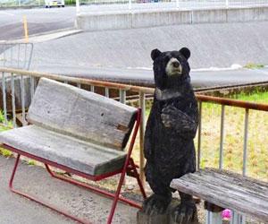 写真:バス亭のくま