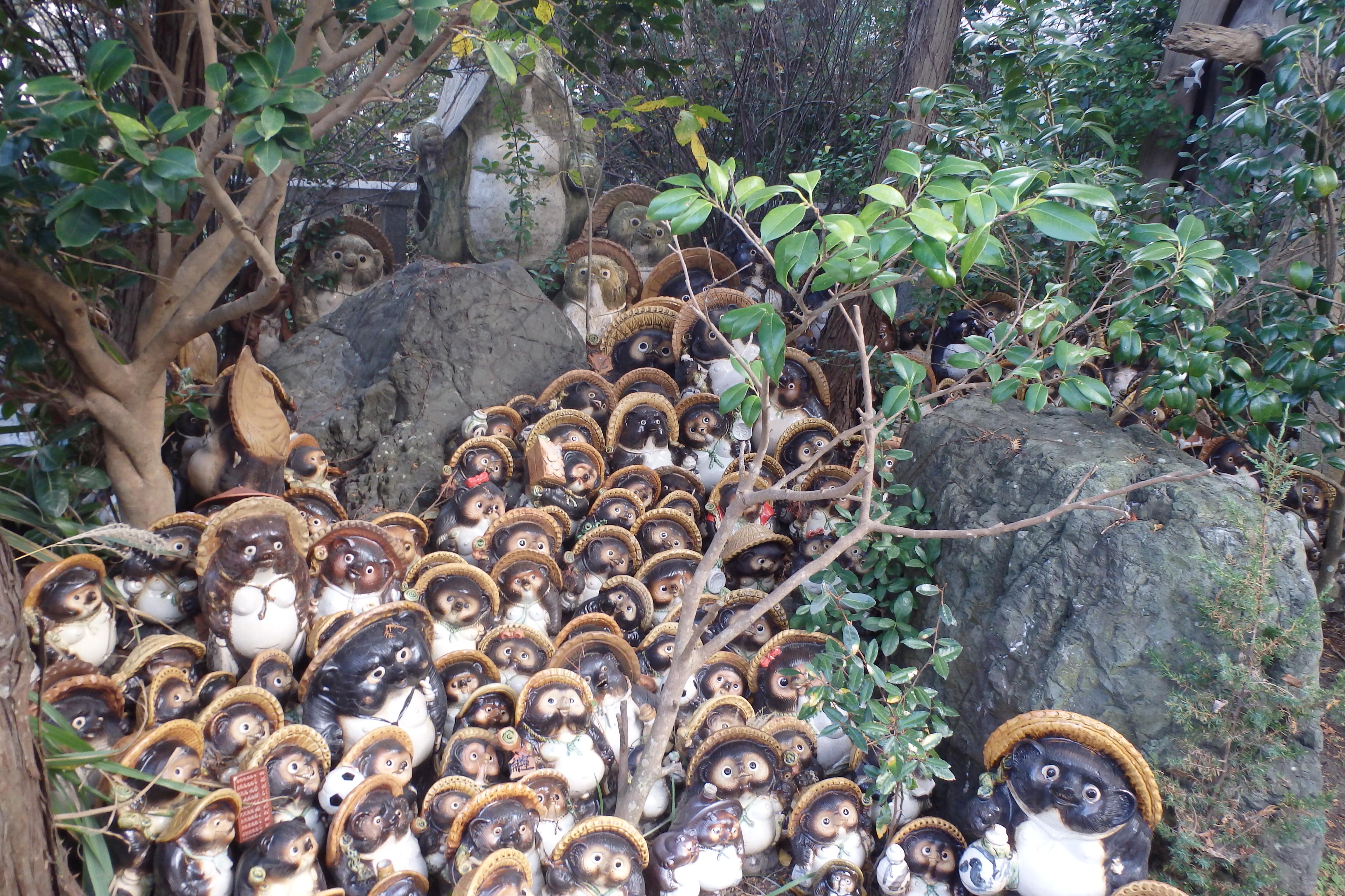 写真:淡島神社のたぬき(1枚目)