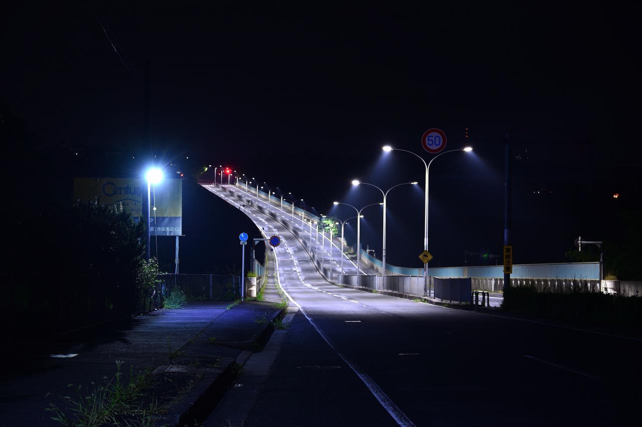 写真:暗闇に白く浮かぶ道(1枚目)