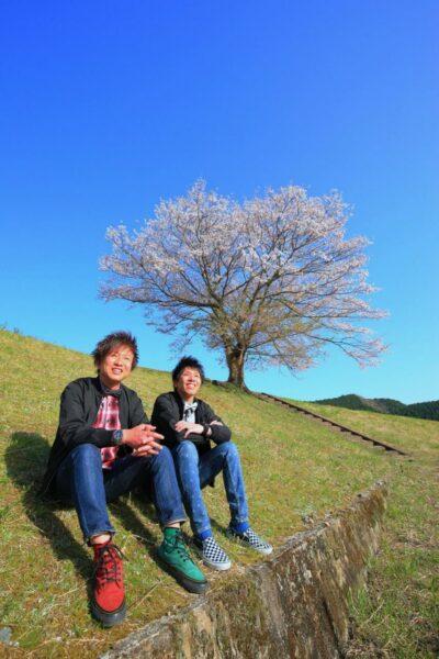 写真:熊野本宮大社の1本桜