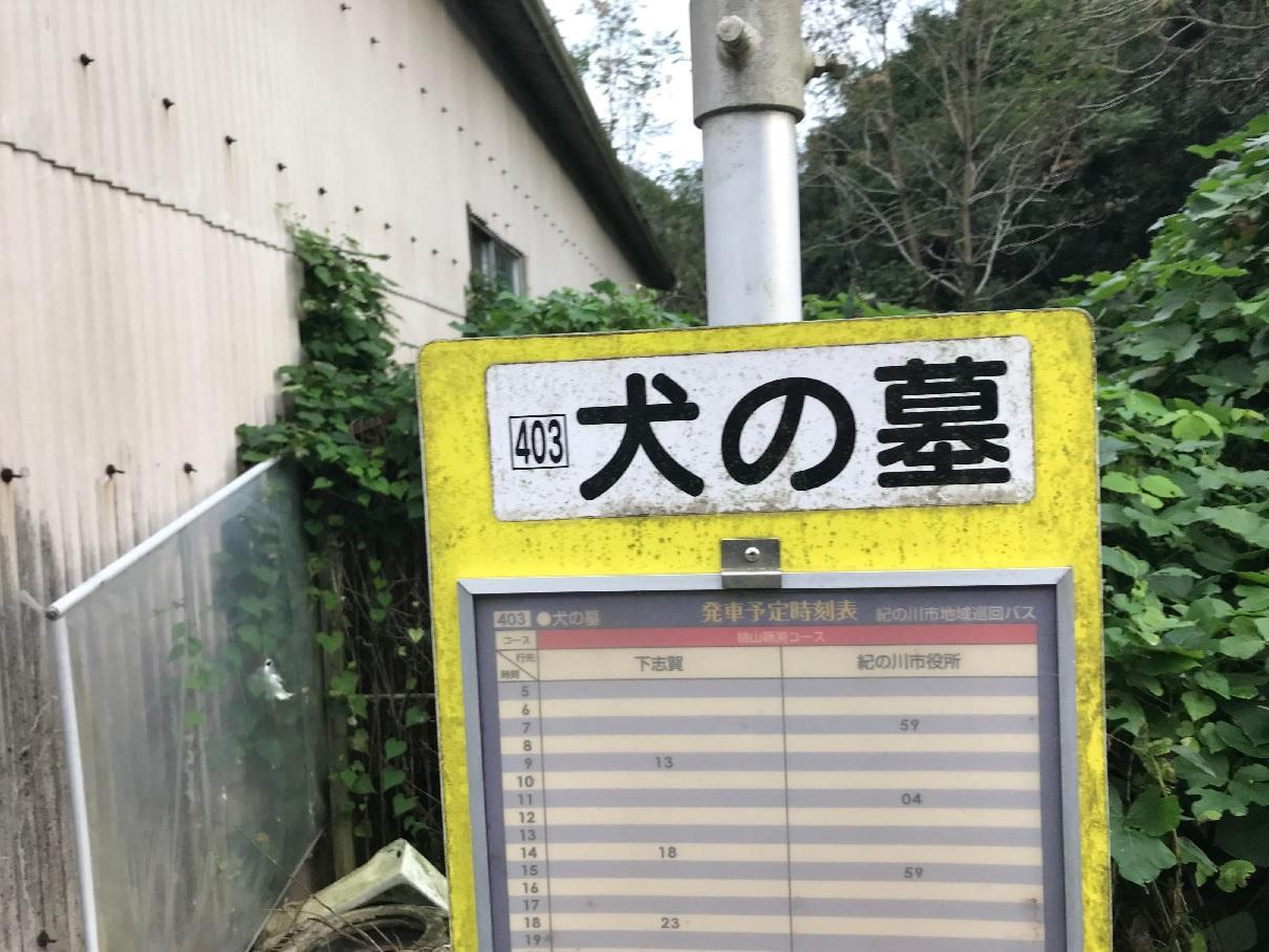 写真:謎のバス停(1枚目)