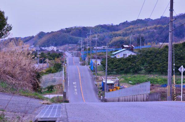 写真:紀ノ川広域農道 ジェットコースター道
