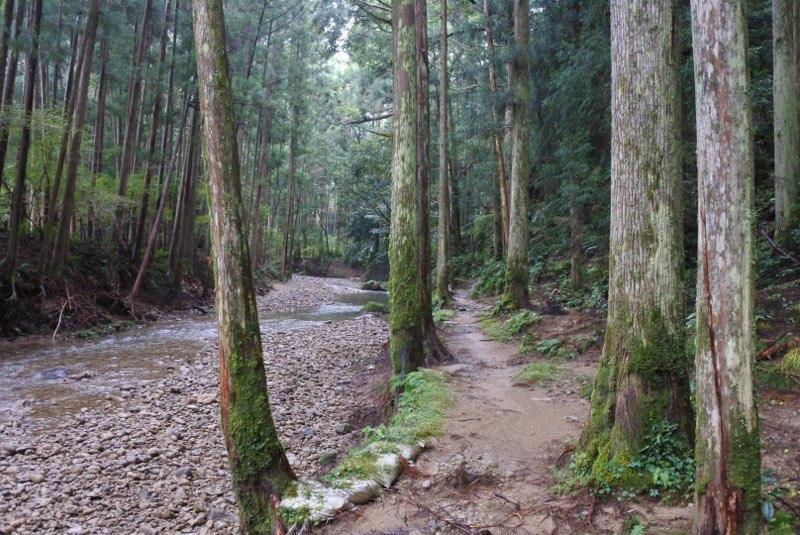 写真:桑ノ木の滝(3枚目)