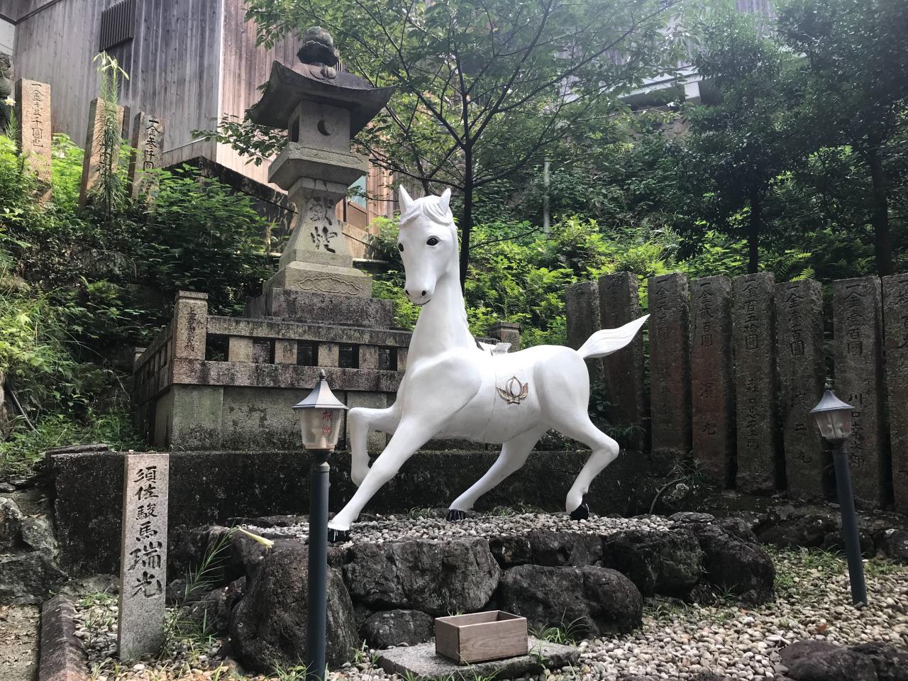 写真:白馬の…!?(2枚目)
