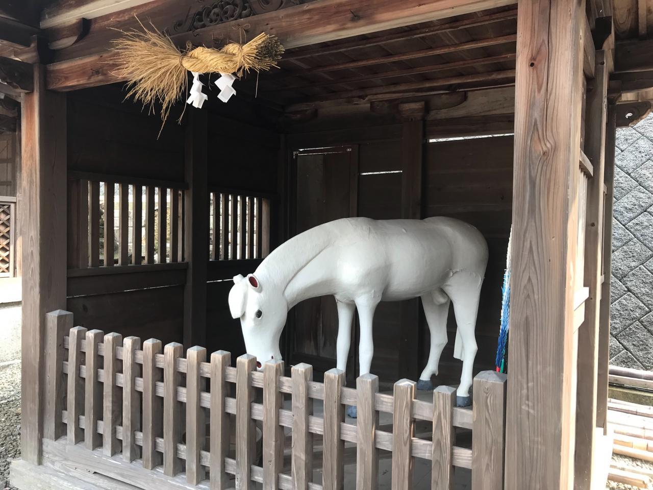 写真:白馬の…!?(3枚目)