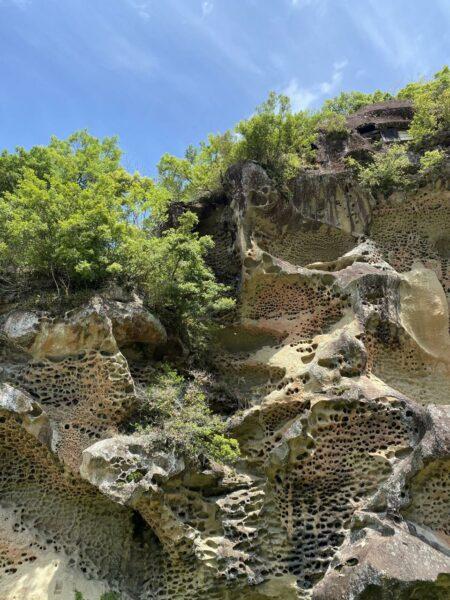 写真:高池の虫食い岩