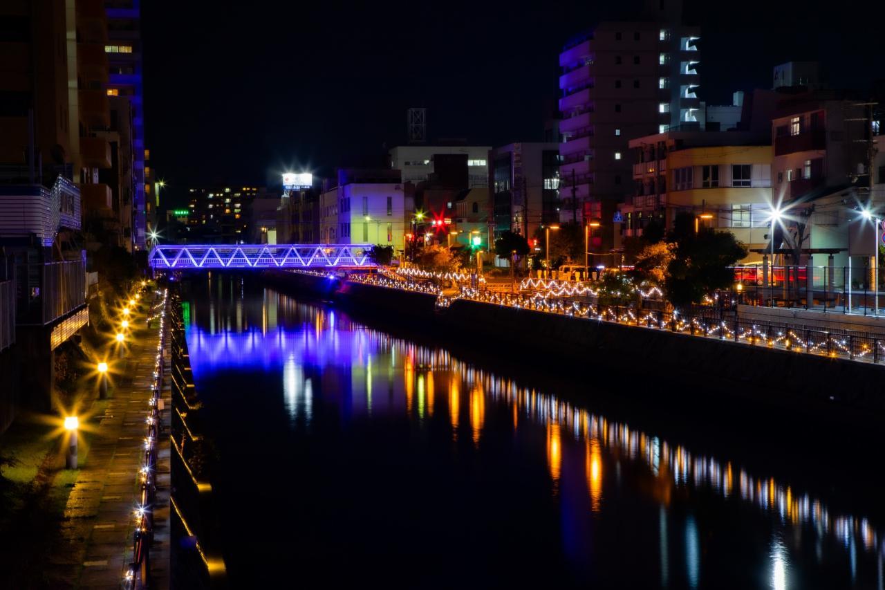 写真:市堀川のイルミネーション(1枚目)