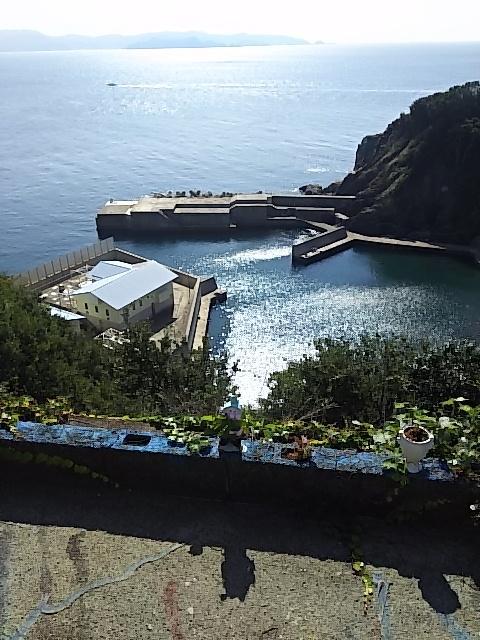 写真:山頂から海を見下ろしたような絶景づくし(3枚目)