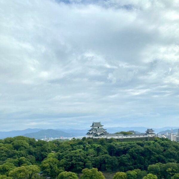 写真:虎伏山(とらふすやま)/和歌山城
